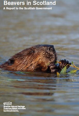 Beavers in Scotland - A report to Scottish Government front cover