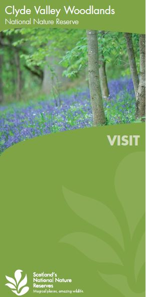 Visit Clyde Valley Woodlands NNR front cover