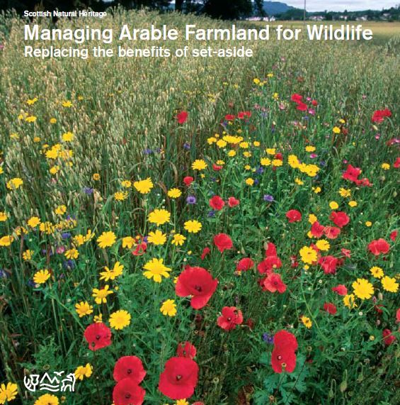 Managing Arable Farmland for Wildlife - Replacing the benefits of set-aside front cover