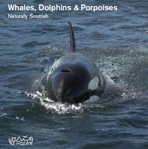 Naturally Scottish - Whales, Dolphins and Porpoises front cover