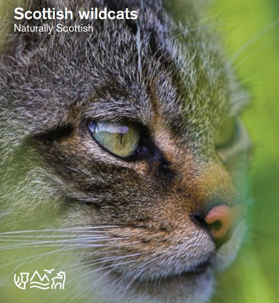 Naturally Scottish - Wildcats front cover