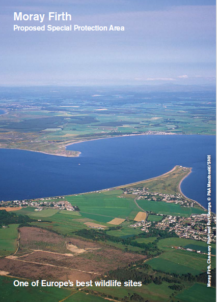 Moray Firth site Summary image