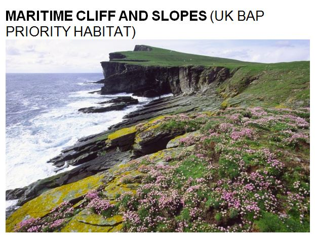 uk bap maritime cliff and slopes