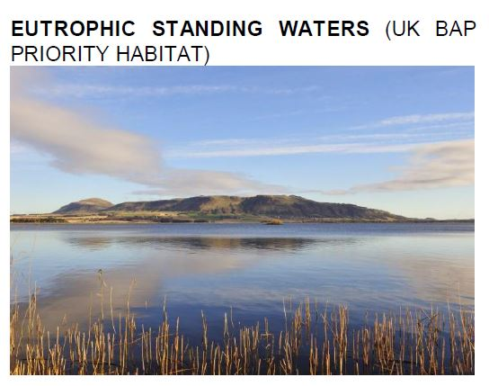 Eutrophic Standing waters