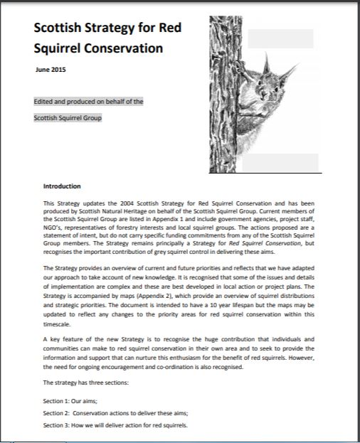 Scottish Strategy for Red Squirrel Conservation front cover