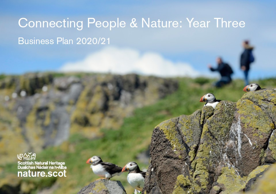 Business plan front cover - puffins on rocks