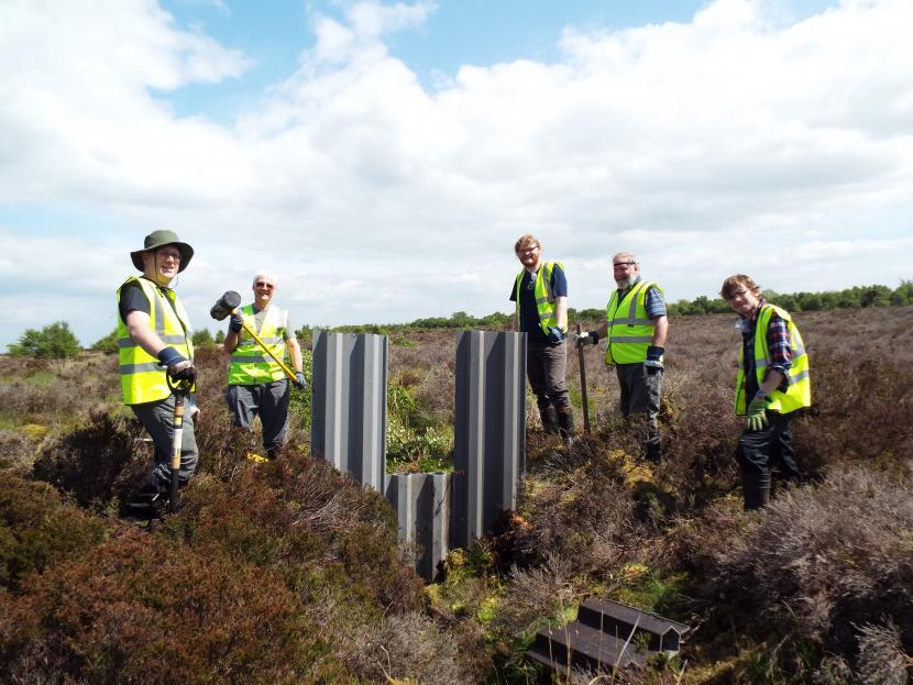 Group of volunteers ditch blocking at Langlands. ©Sara Green /Butterfly Conservation Scotland. For information on reproduction rights contact the Scottish Natural Heritage Image Library on Tel. 01738 444177 or www.nature.scot