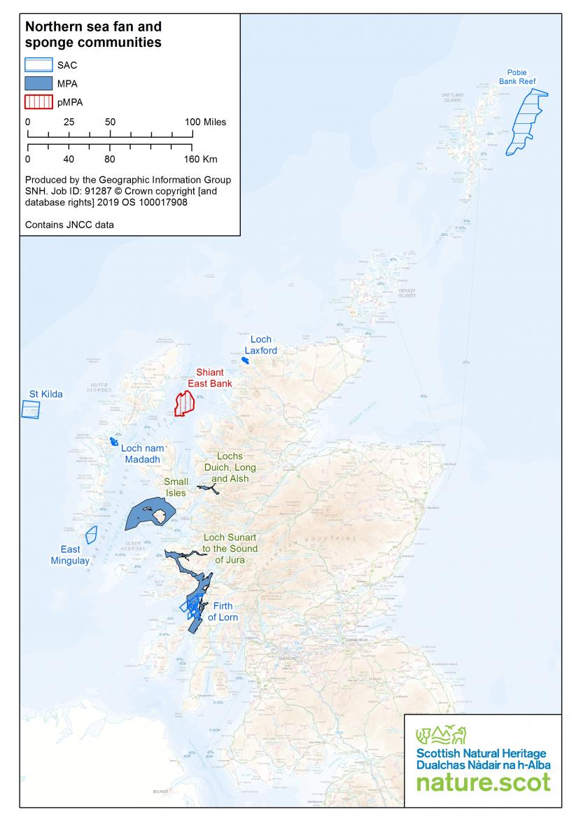 North sea fan and sponge communities map