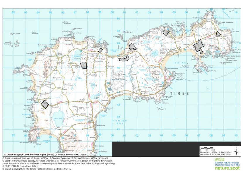 Uist, Coll and Tiree Barnacle Goose Management Scheme - Tiree eligible fields