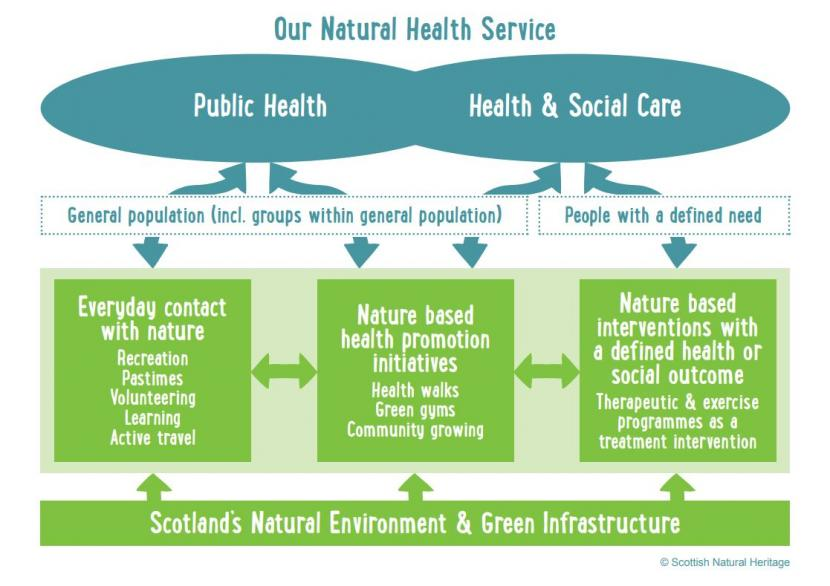 Our natural health service diagram