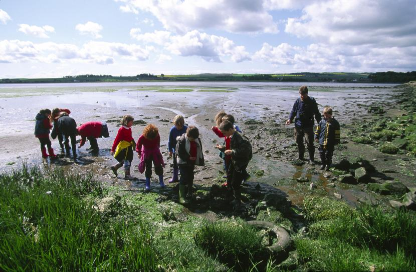 Ranger led school group at the Eden Estuary LNR