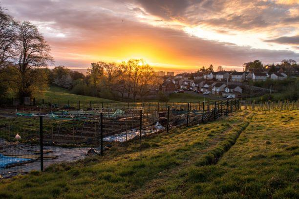 Fernbrae Meadows - new community allotments for local food production