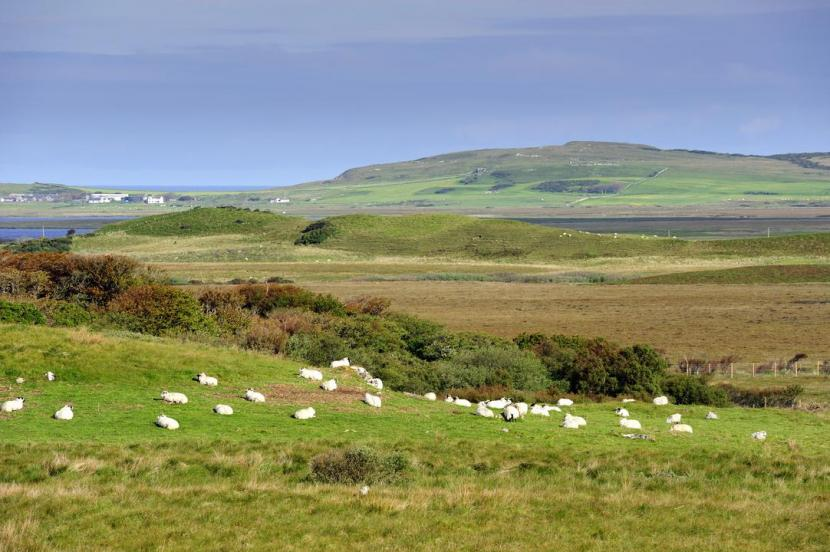 Cnoc Fada, Islay, Islay and Jura Gaelic placenames booklet 2011 ©Lorne Gill/NatureScot