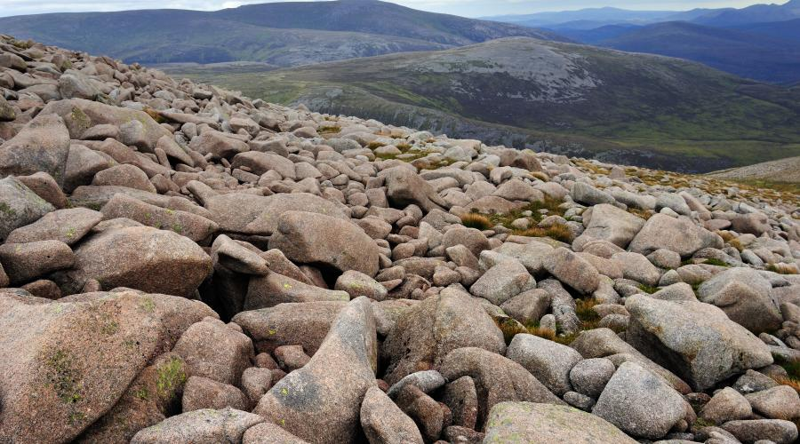 Granite blockfield on Derry Cairngorm, Cairngorm National Park. ©Lorne Gill/SNH. For information on reproduction rights contact the Scottish Natural Heritage Image Library on Tel. 01738 444177 or www.nature.scot
