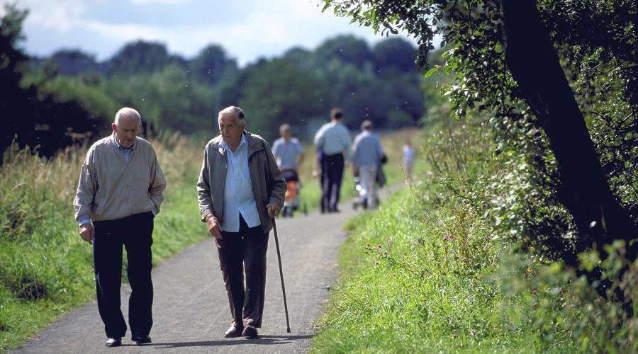 People walking on a footpath near Bishopbriggs. Strathclyde ©Lorne Gill/SNH. For information on reproduction rights contact the Scottish Natural Heritage Image Library on Tel. 01738 444177 or www.nature.scot