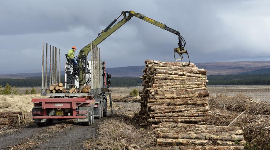 Loading a timber lorry with felled commercial conifer plantations at Forsinard Flows NNR ©Lorne Gill/SNH.  For information on reproduction rights contact the Scottish Natural Heritage Image Library on Tel. 01738 444177  or www.nature.scot