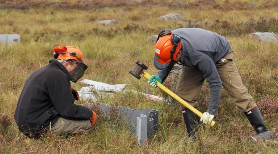 SNH staff ditch blocking on Flanders Moss NNR, Argyll and Stirling Area. ©Lorne Gill/SNH. For information on reproduction rights contact the Scottish Natural Heritage Image Library on Tel. 01738 444177 or www.nature.scot