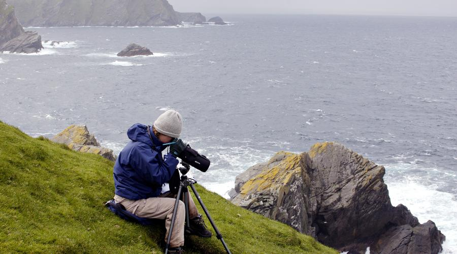 Seabird researcher, Hermaness NNR, Unst, Shetland Isles. ©Lorne Gill/SNH. For information on reproduction rights contact the Scottish Natural Heritage Image Library on Tel. 01738 444177 or www.nature.scot