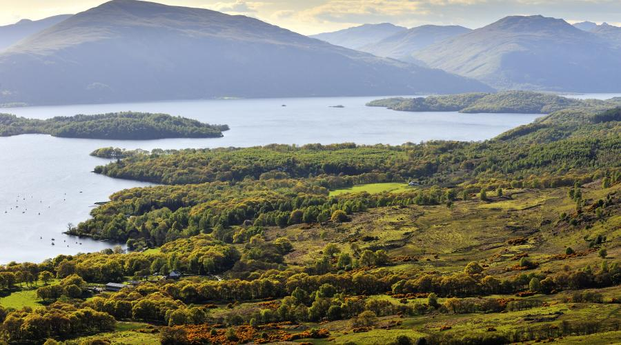 Loch Lomond National Park from Conic Hill. ©Lorne Gill/SNH. For information on reproduction rights contact the Scottish Natural Heritage Image Library on Tel. 01738 444177 or www.nature.scot