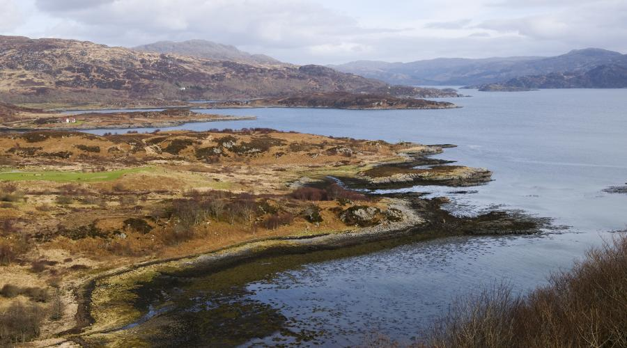 The Loch Sunart coastline near Glenmore, Ardnamurchan, West Highland Area. ©Lorne Gill/SNH. For information on reproduction rights, contact the Scottish Natural Heritage image library on Tel: 01738 444177 or www.nature.scot