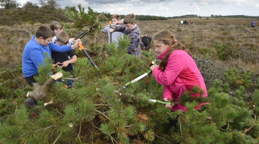 Primary school pupils from Slamannan and Limerigg primary schools on an educational visit to Easter Drumclair Bog. ©Lorne Gill/SNH. For information on reproduction rights contact the SNH Image Library on Tel. 01738 444177 or www.nature.scot