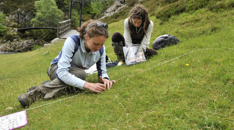 Phd research student from Aberdeen University and her field assistant surveying a quadrat in Glen Tilt.  ©Lorne Gill/SNH. For information on reproduction rights contact the Scottish Natural Heritage Image Library on Tel. 01738 444177 or www.nature.scot
