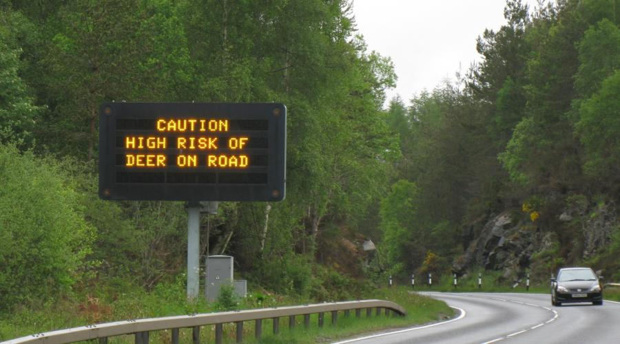 Road sign warning drivers of the increased risk of deer on Scotland's roads due to clock change.  ©Lorne Gill/SNH.  For information on reproduction rights contact the Scottish Natural Heritage Image Library on Tel. 01738 444177 or www.nature.scot