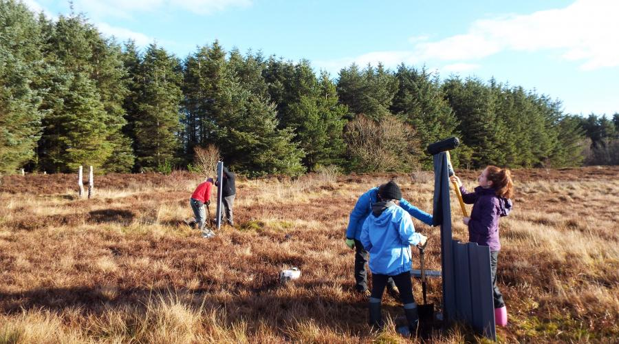 Volunteers ditch blocking at Black Moss. ©David Hill/Peatland ACTION Butterfly Conservation Scotland