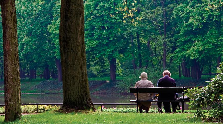Couple on park bench. ©Lorne Gill/SNH. For information on reproduction rights contact the Scottish Natural Heritage Image Library on Tel. 01738 444177 or www.nature.scot