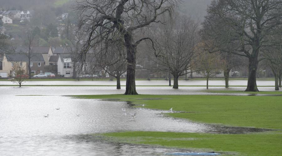 Flooded parkland at the South Inch, Perth. Jan 2016. ©Lorne Gill/SNH For information on reproduction rights contact the Scottish Natural Heritage Image Library on Tel. 01738 444177 or www.nature.scot