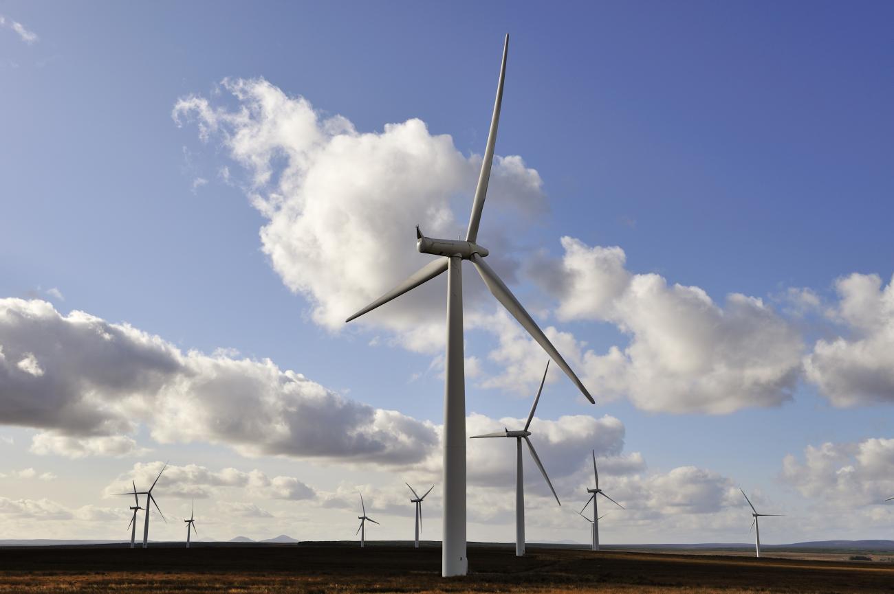 Wind farm impacts on birds | Scottish Natural Heritage