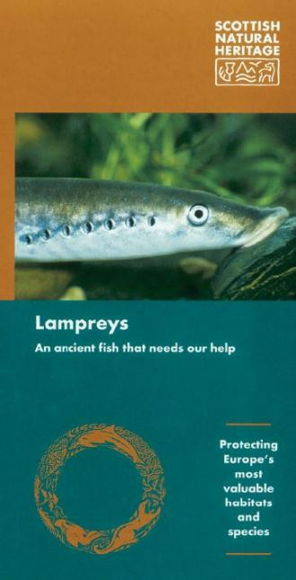 Lampreys front cover
