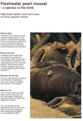 Freshwater pearl mussel - a species on the brink front cover