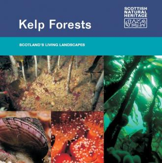 Kelp Forests - front cover