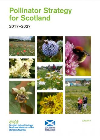 Pollinator strategy front cover