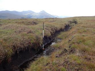 Eroding gully, with measuring pole showing depth. ©RJCooper/Loch Lomond & The Trossachs National Park Authority / Peatland ACTION