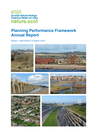 Planning Performance Framework Annual Report 18-19 front cover