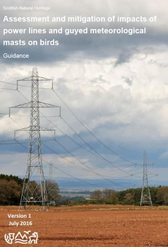 Assessment and mitigation of power lines