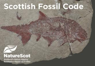 Scottish Fossil Code Postcard