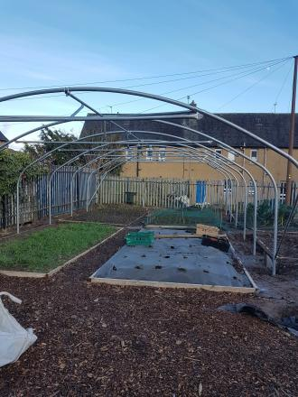 Image of growers' polytunnel