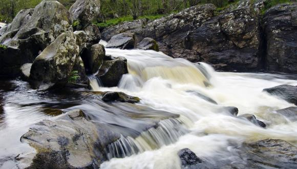 Waterfalls at Rumbling Brig on the River Braan, Dunkeld. ©Lorne Gill/SNH. For information on reproduction rights contact the Scottish Natural Heritage Image Library on Tel. 01738 444177 or www.nature.scot