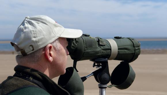 Birdwatcher using a telescope on the beach at Tentsmuir NNR. Tayside ©Lorne Gill/SNH. For information on reproduction rights contact the Scottish Natural Heritage Image Library on Tel. 01738 444177 or www.nature.scot
