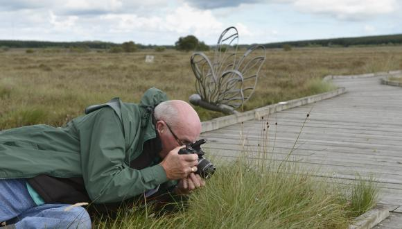 World bog day, 27th July 2014, Blawhorn Moss NNR. Photographing bog plants. ©Lorne Gill/SNH. For information on reproduction rights contact the Scottish Natural Heritage Image Library  on Tel. 01738 444177 or www.nature.scot