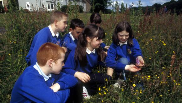 Group of children looking at flowers in a field. ©SNH. For information on reproduction rights contact the Scottish Natural Heritage Image Library on Tel. 01738 444177 or www.nature.scot