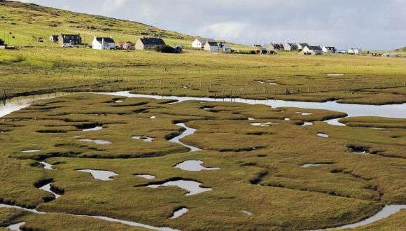 Saltmarsh at Northon, Isle of Harris, Western Isles Area