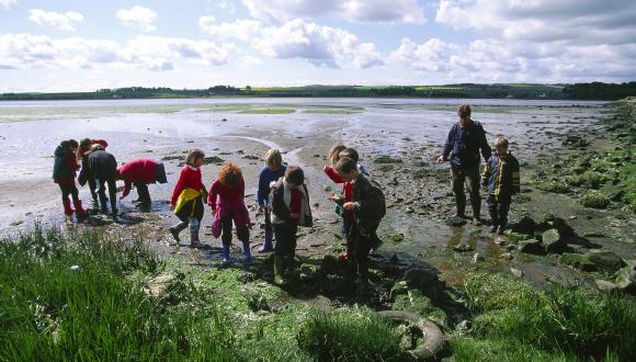 Ranger led school group at the Eden Estuary LNR, Fife.©Lorne Gill/SNH