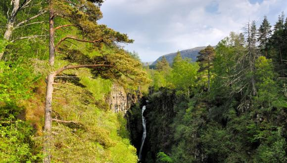Corrieshalloch Gorge. copryight National Trust for Scotland