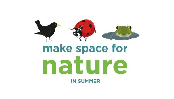 Make Space for Nature this Summer text, accompanied by graphics of blackbird, ladybird and frog