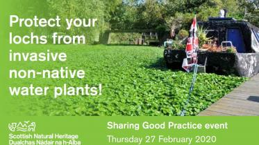 SGP Protect your lochs from invasive non-native water plants  copyright GBNNS (GB non-native species secretariat)