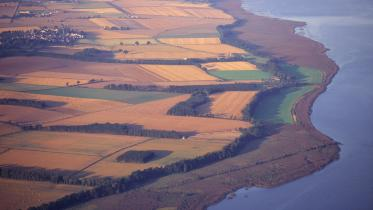 Aerial view of the River Tay reedbeds